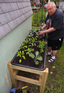 Image: Bucket List Raised Garden Bed-Planting