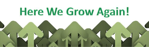 Image: here we grow again arrows